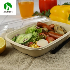Compostable bamboo pulp disposable biodegradable food container