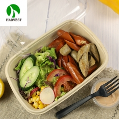 Stackable compostable unbleached bagasse pulp food box