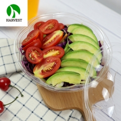 Clear small salad plastic disposable container bowls with lid
